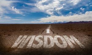 The Stewardship of Godly Wisdom